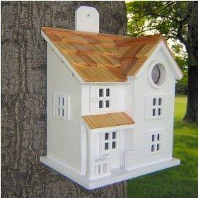 Unusual Bird Houses